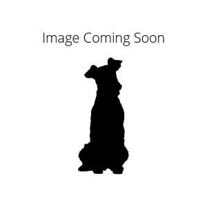 Furrylicious Irish Water Spaniel